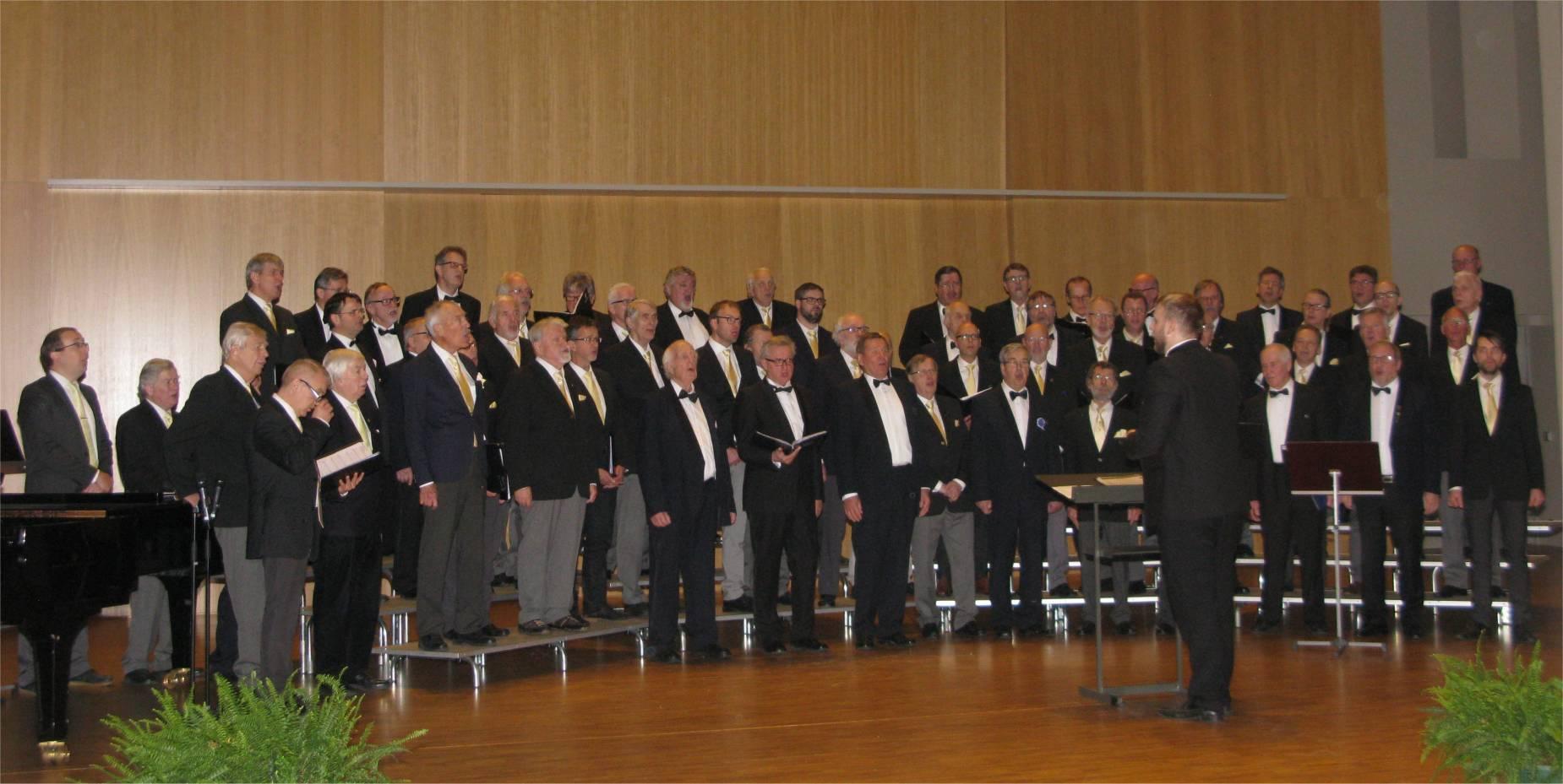 Seniorikonsertti Schaumansalissa v. 2017